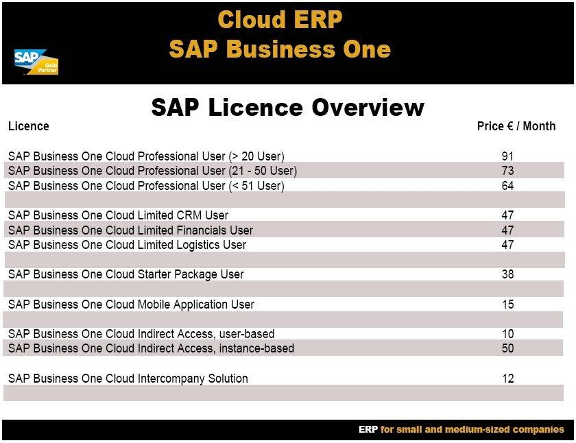 Cloud ERP licenses
